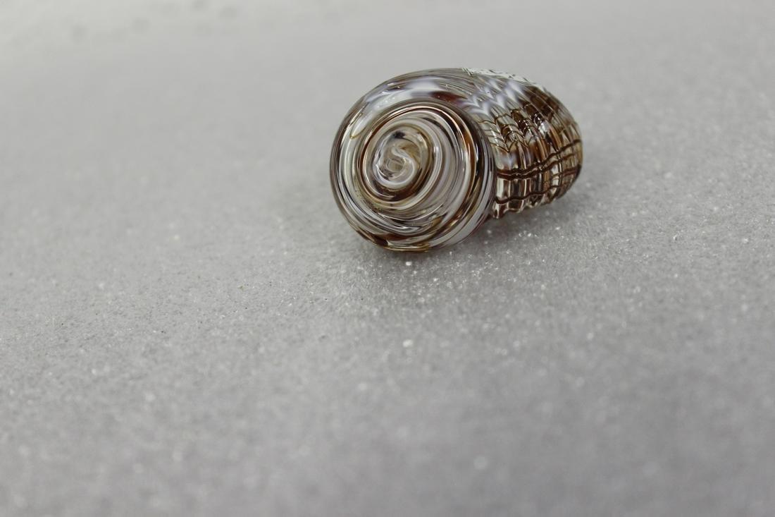 A Gozo Glass Snail