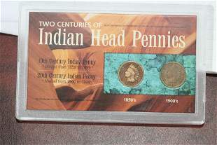Two Centuries of Indian Head Pennies