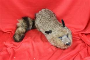 A Faux fur Toy