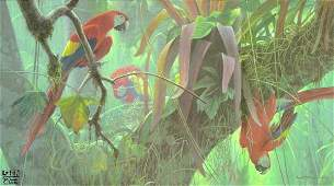 Tropical Canopy - Scarlet Macaws