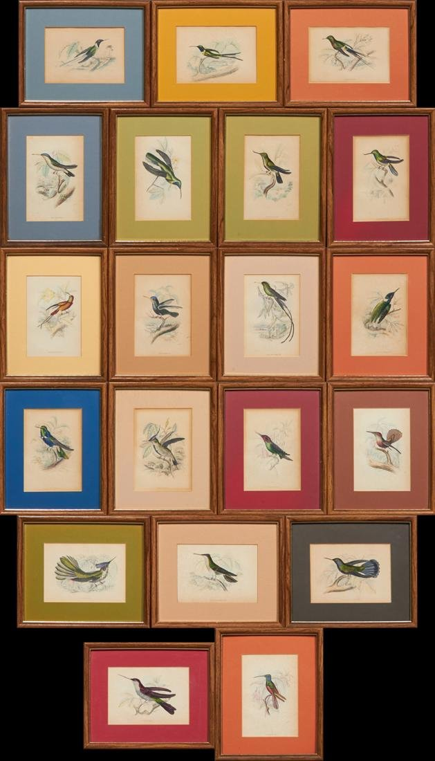 "William Home Lizars, ""Hummingbirds,"" early 20th c.,"