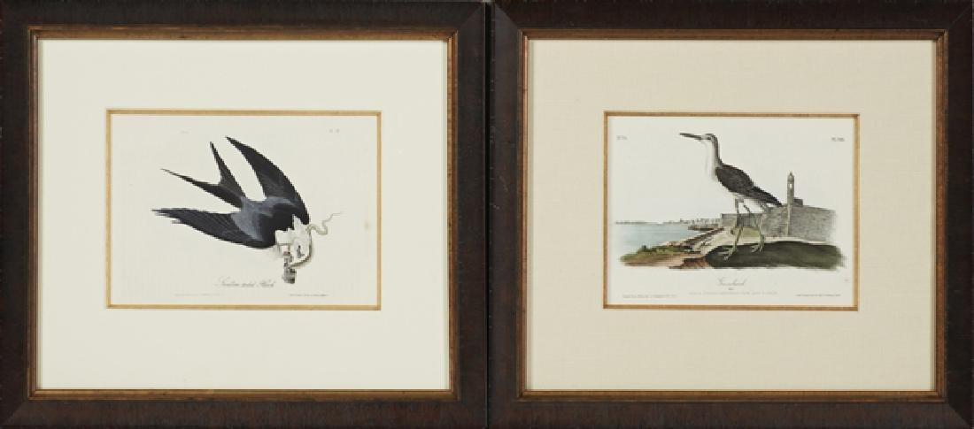 """John James Audubon (1785-1851), """"Greenshank,"""" and"""