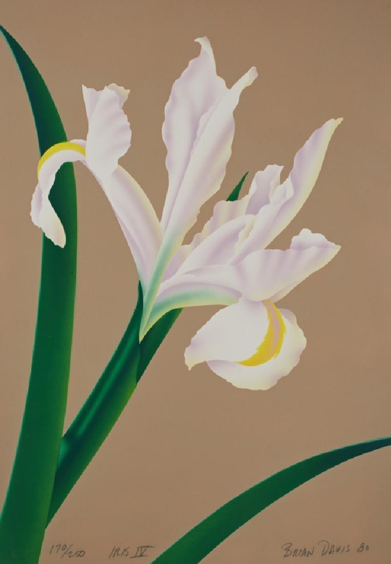 "Brian Davis (1946-), ""Iris IV,"" 1980, serigraph,"