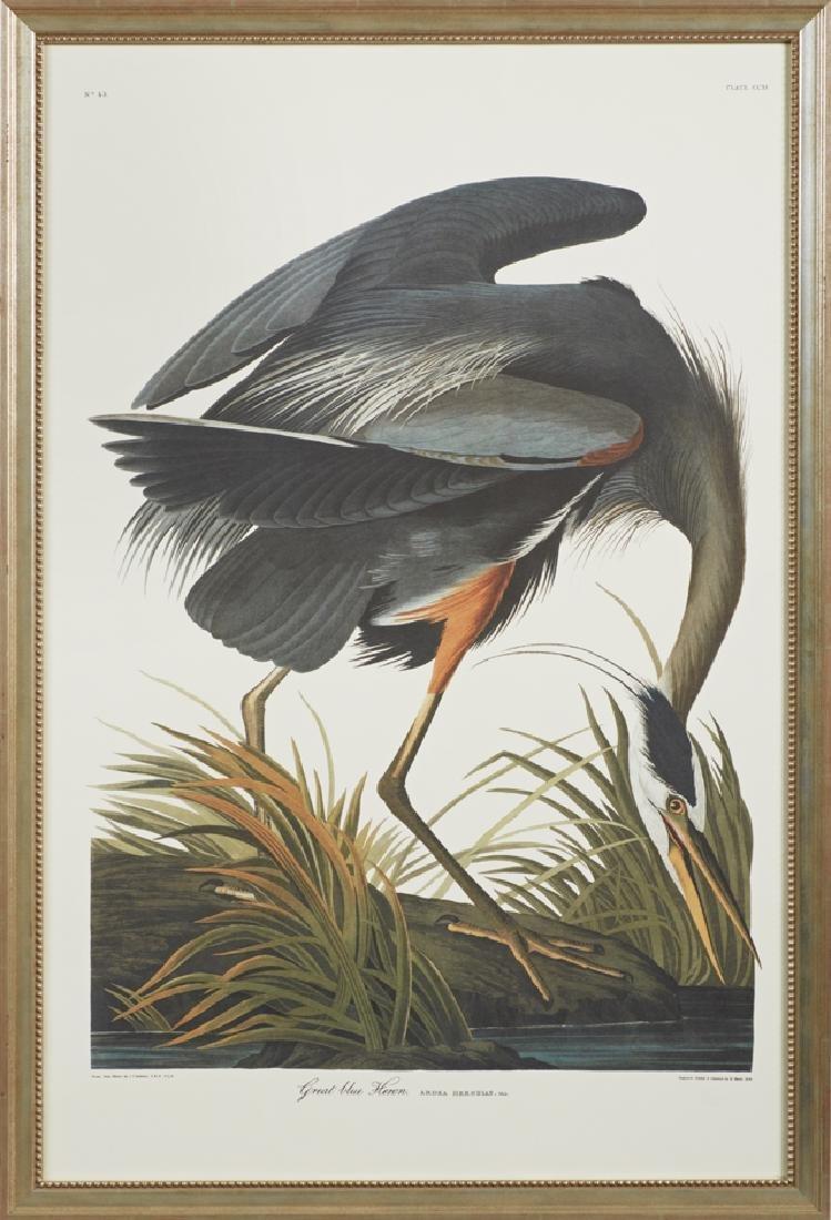 "John James Audubon (1785-1851), ""Great Blue Heron,"" No."