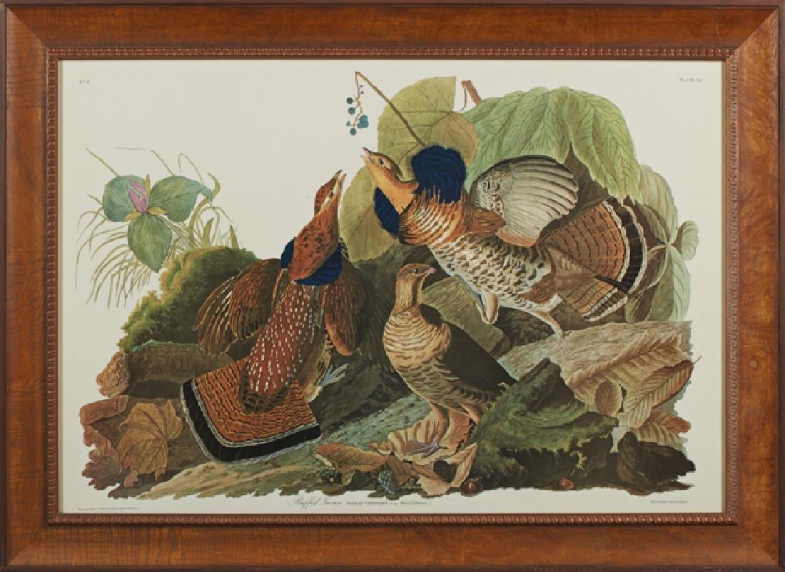 "John James Audubon (1785-1851), ""Ruffled Grouse,"" No."