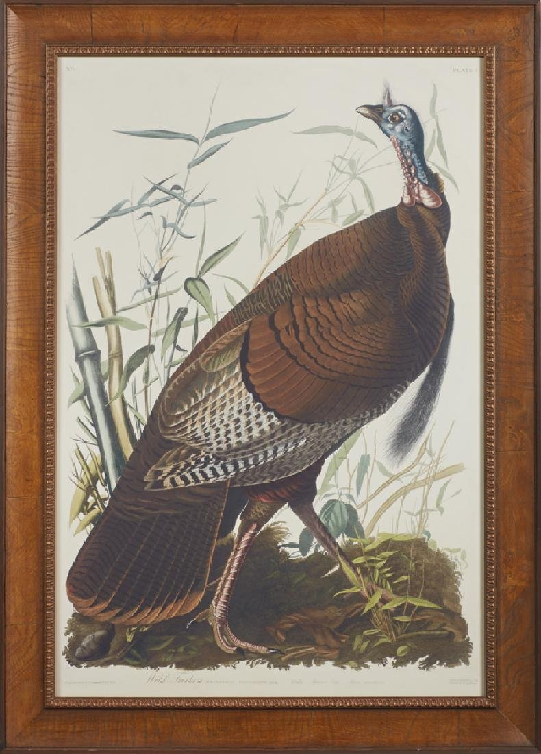 "John James Audubon (1785-1851), ""Wild Turkey,"" No. 1,"