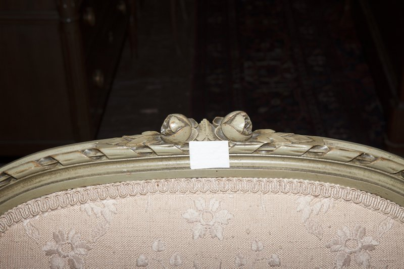 Pair of Louis XVI Style Polychromed Bergere Wing - 2