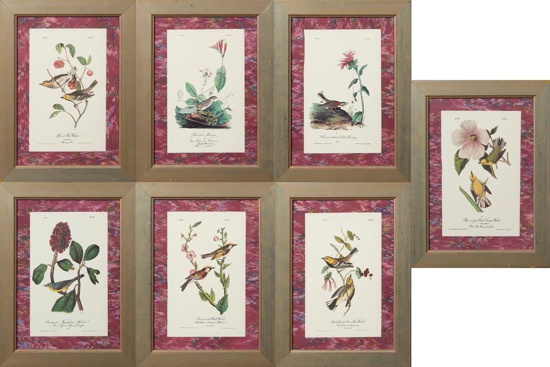 John James Audubon (1785-1851), Seven Octavo Songbird