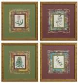 Four Vintage Botanical Prints early 20th c