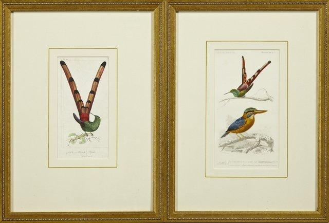 "Edouard Travies (1809-1869), ""Oiseau Mouche,"" and"