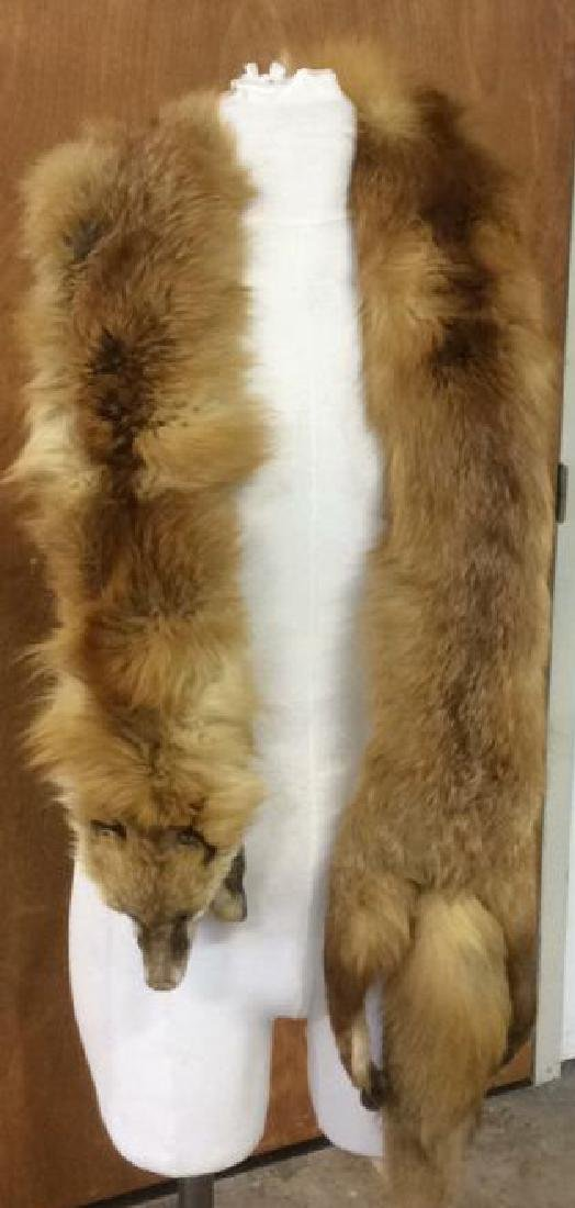 2 Antique Genuine Fur Pelt Wraps Group of 2, likely