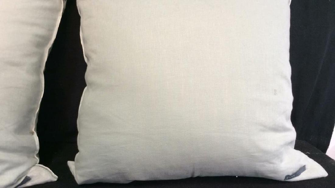 Pair light Turquoise Zebra Throw pillows Each measures - 7