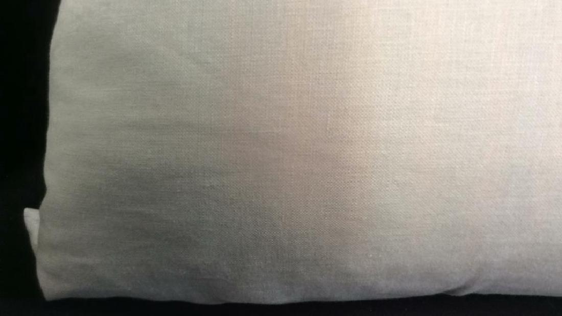 Pair light Turquoise Zebra Throw pillows Each measures - 8