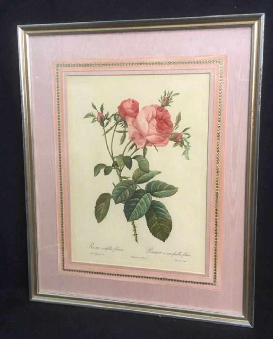 Vintage Botanical Rose Still Life Print Satin Matt