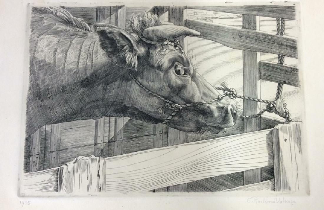 E. Roilsma Volonca Etching Artwork Cow