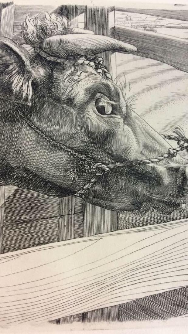 E. Roilsma Volonca Etching Artwork Cow - 2