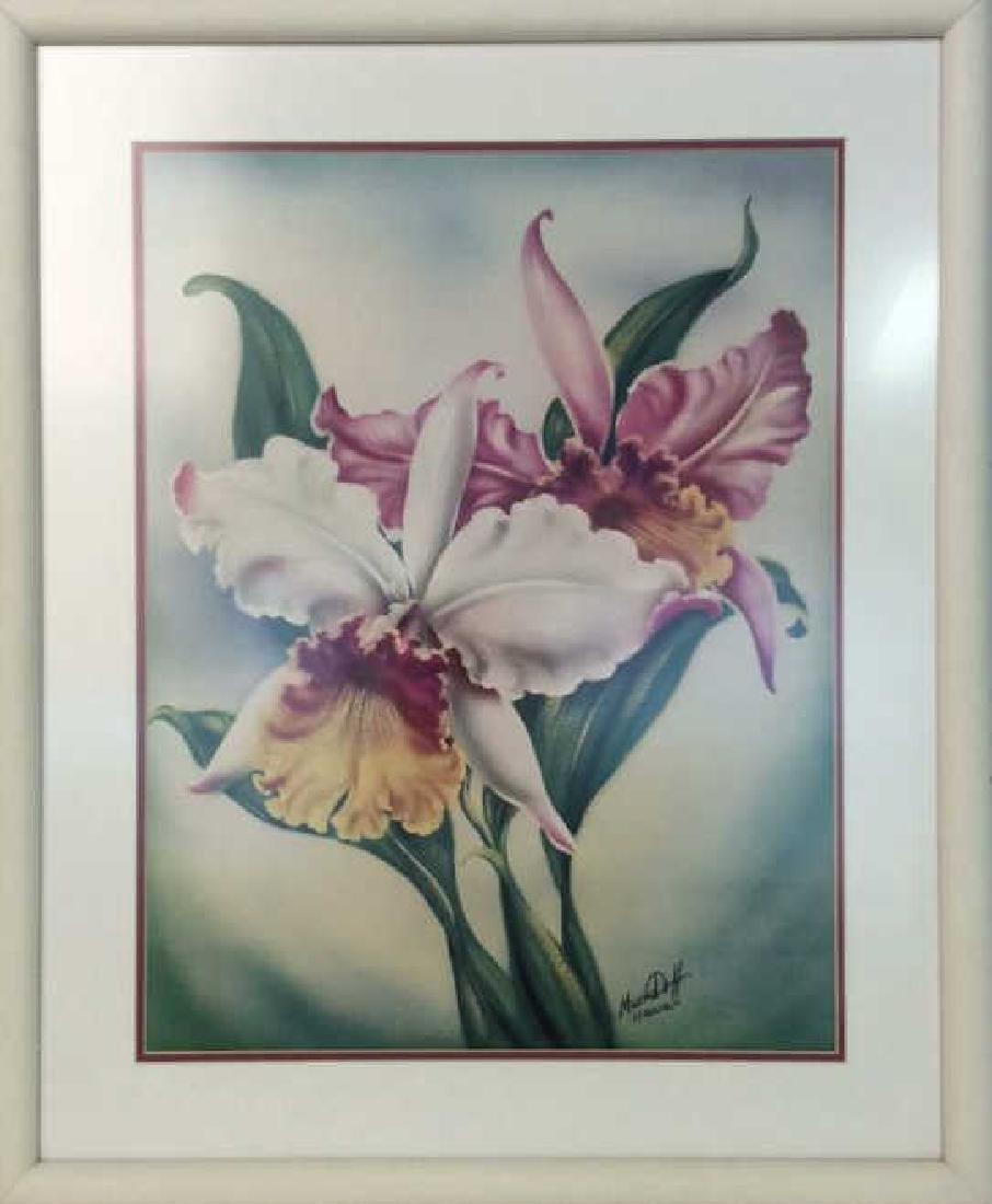 Framed Floral Illustration Print