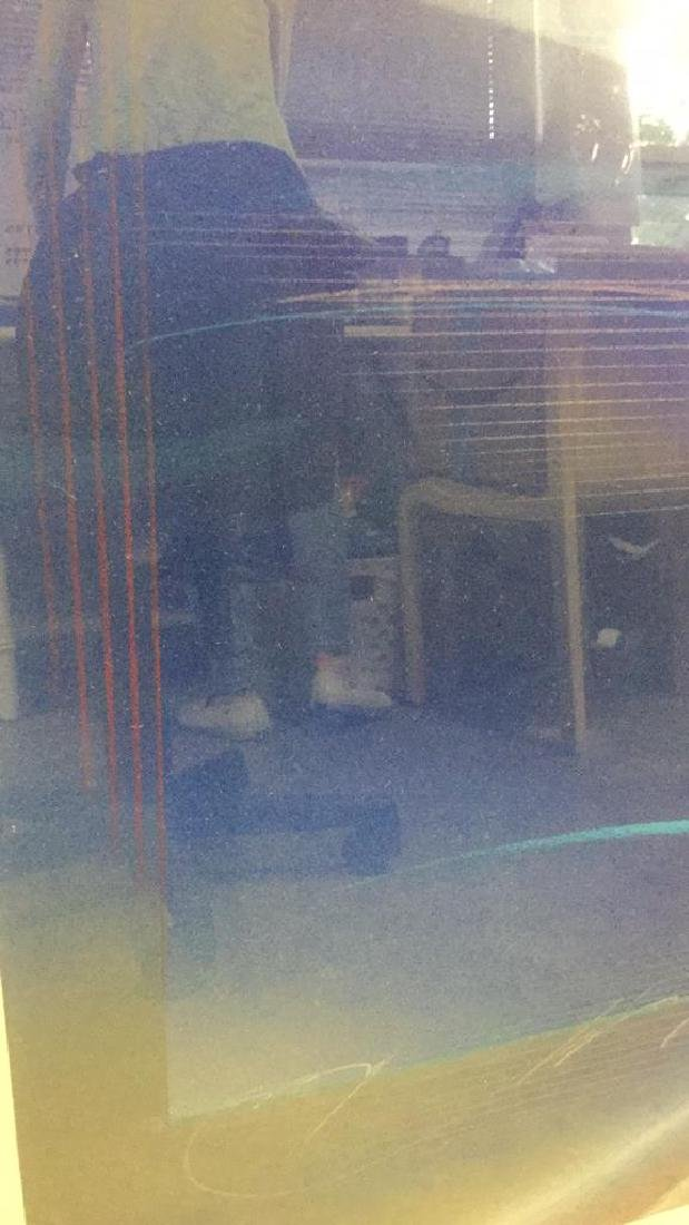 Abstract Signed Litho Refracting Dolphins - 8