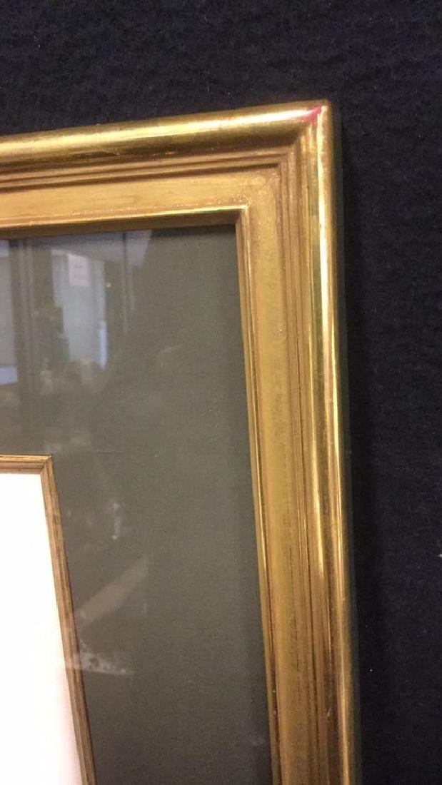 Framed Print Knobbilled Duck By Gail Darroll - 5