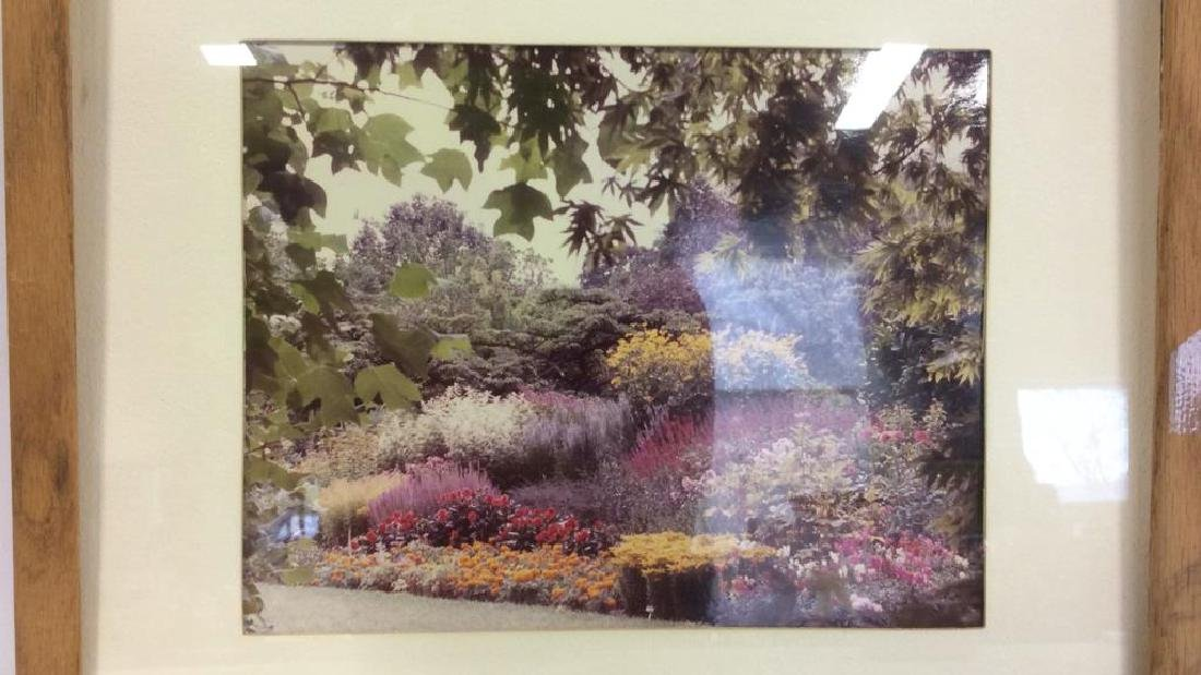 Framed & Matted Photo Print Colorful Garden - 3