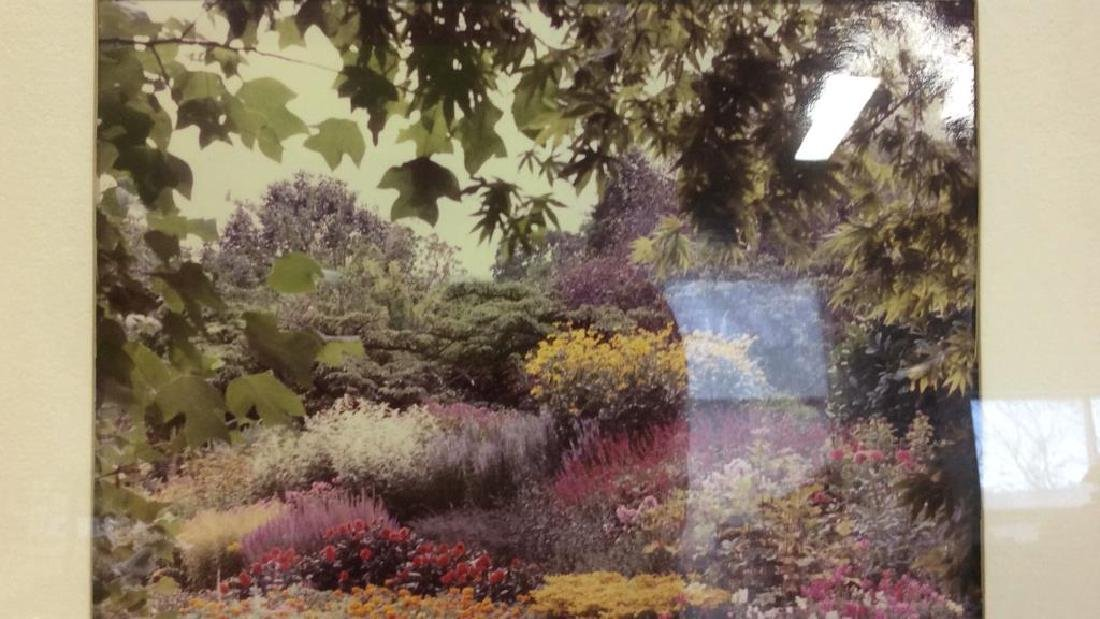 Framed & Matted Photo Print Colorful Garden - 4