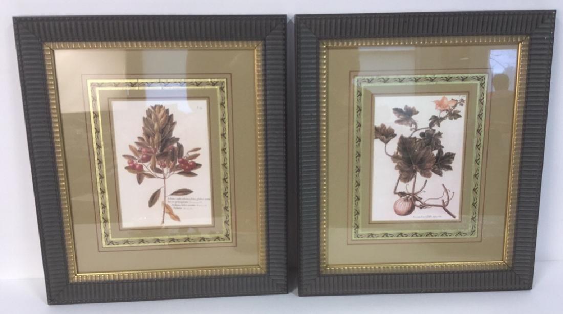 Pair Of Intricately Framed Botanical Prints