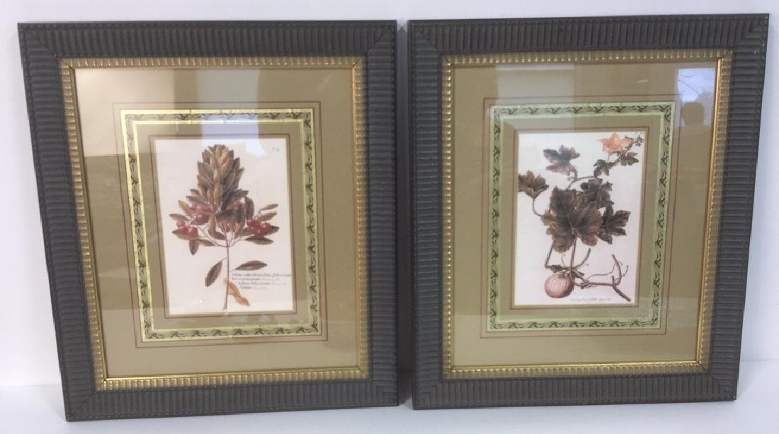 Pair Of Intricately Framed Botanical Prints