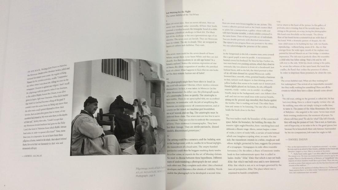 Pair 'Diaspora; Homelands in Exile' Books - 4