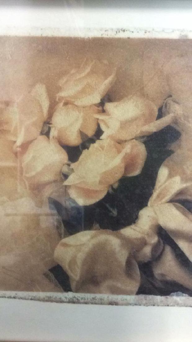Lot 2 Gilded Wood Framed Rose Prints - 6