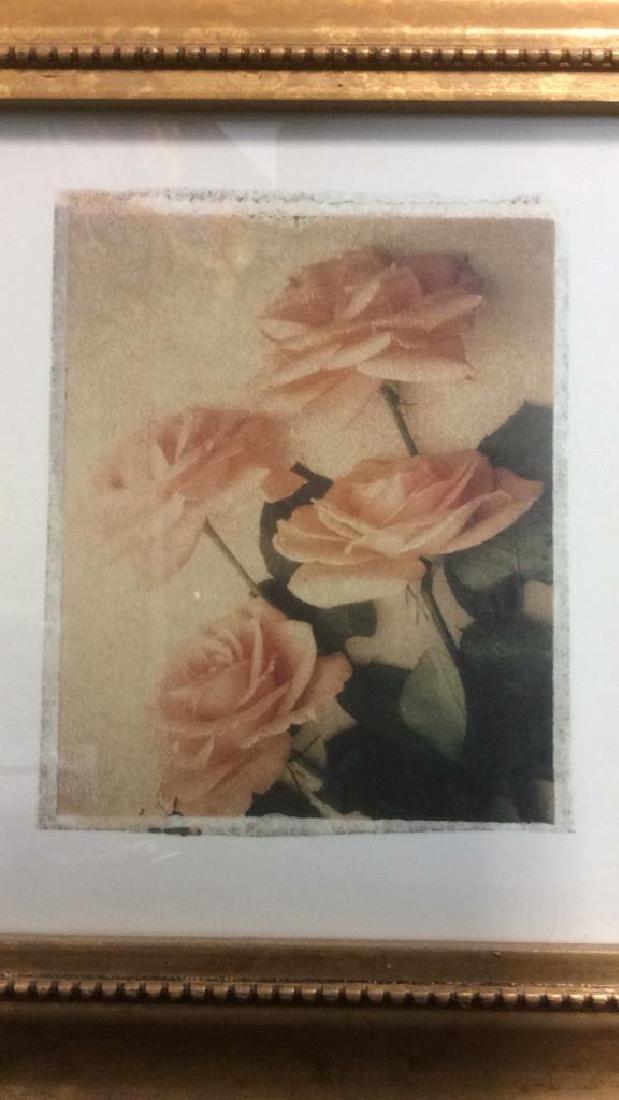 Lot 2 Gilded Wood Framed Rose Prints - 8