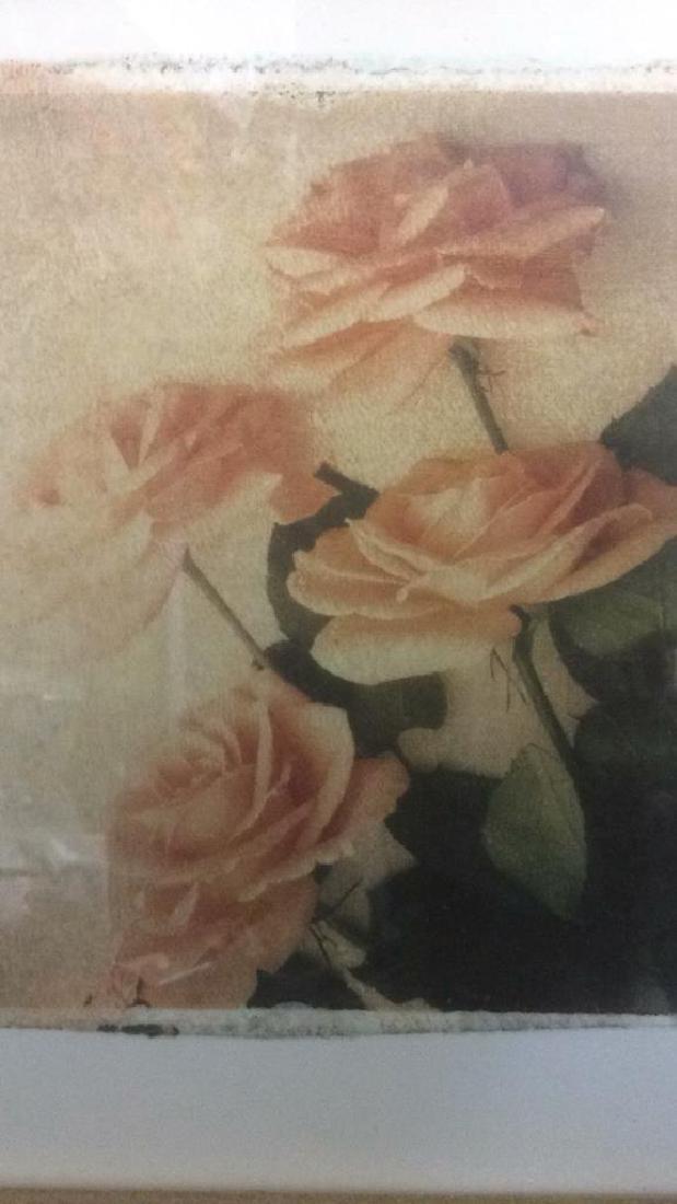 Lot 2 Gilded Wood Framed Rose Prints - 9
