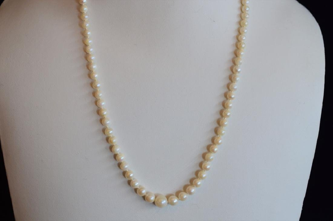 Imitation Graduated Pearl Necklace with Gold Clasp
