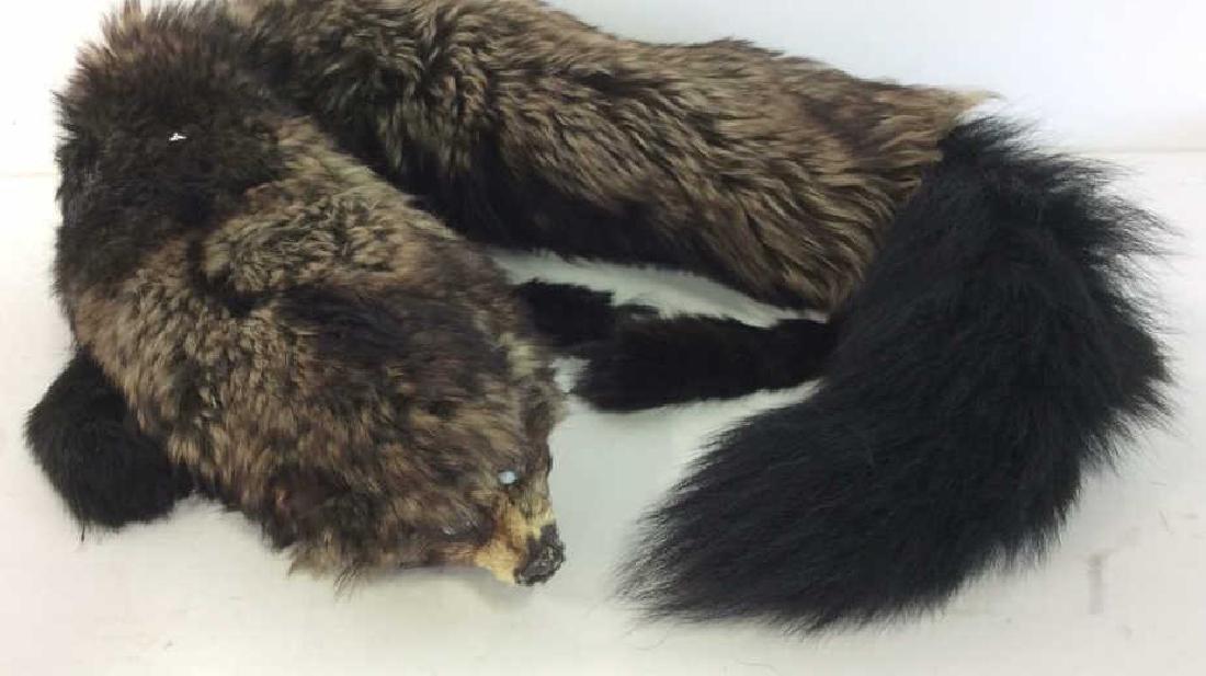 Vintage Fur Stone Martin and Fur Collar - 5