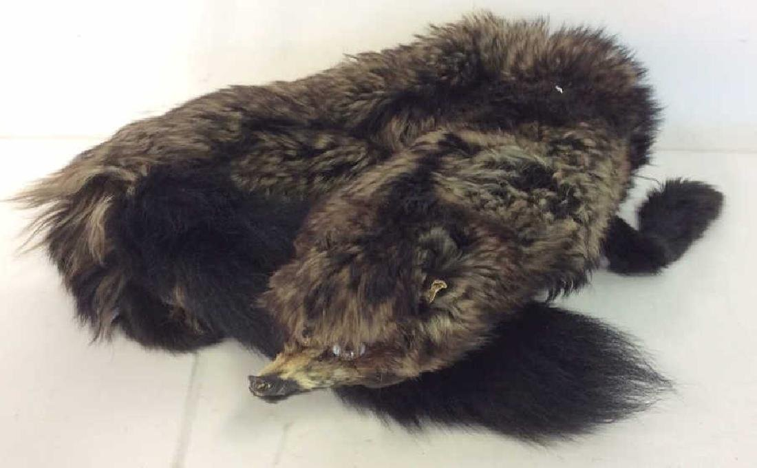 Vintage Fur Stone Martin and Fur Collar - 9