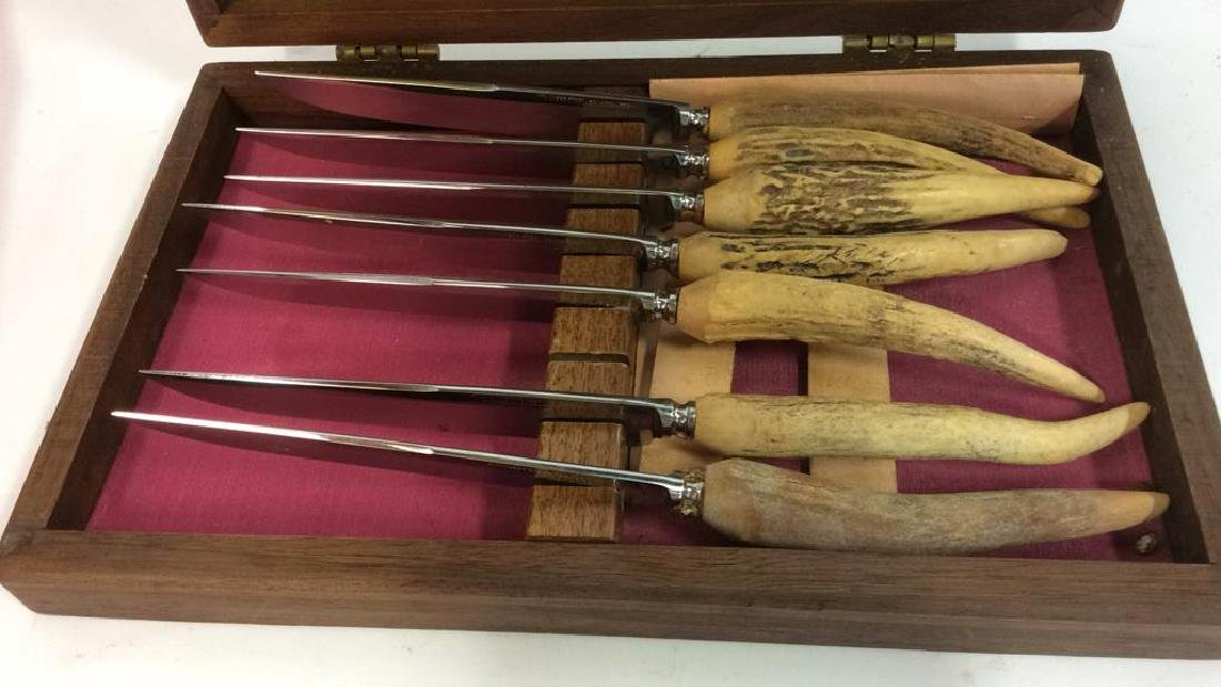 Lot 7 SOLINGEN Bone Handled Knives