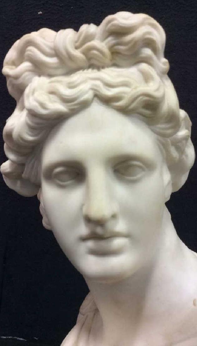 Cream Toned Alabaster Male Bust, England - 10
