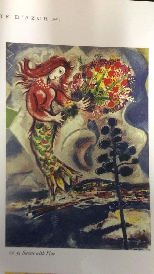 Lot 3 Art Books, MOMA, Chagall, Hirschfield - 8
