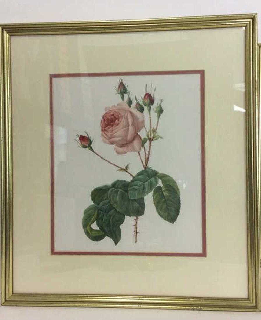 Lot 2 Framed & Matted Floral Prints - 2