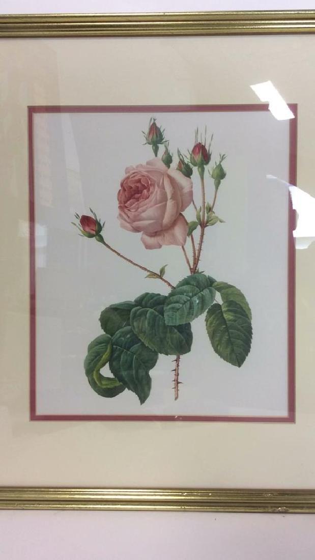 Lot 2 Framed & Matted Floral Prints - 3