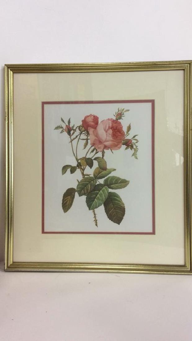Lot 2 Framed & Matted Floral Prints - 5
