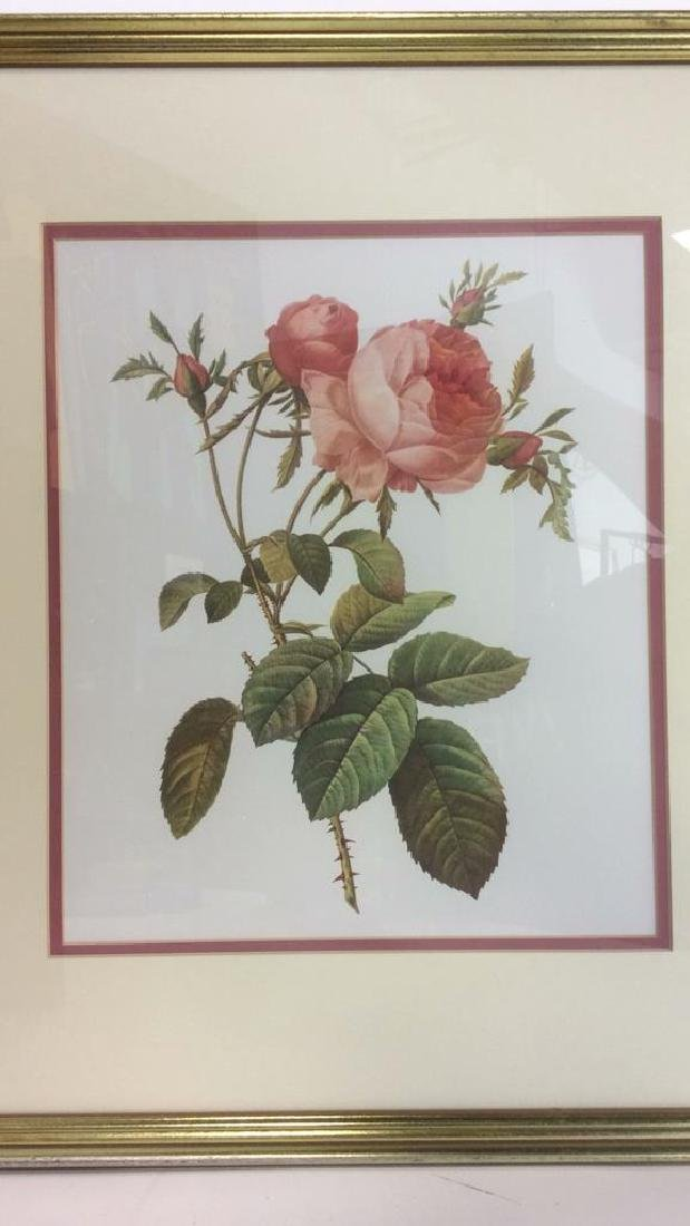 Lot 2 Framed & Matted Floral Prints - 6