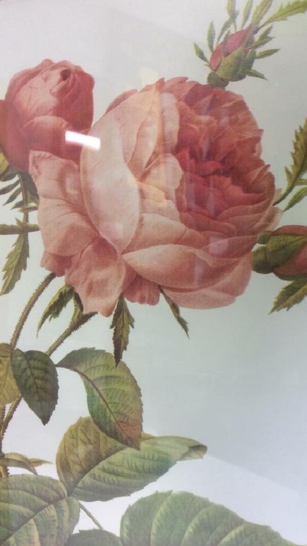 Lot 2 Framed & Matted Floral Prints - 8