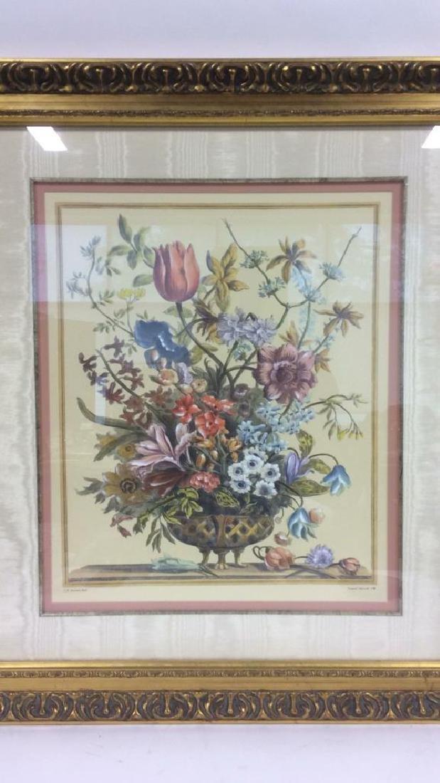 Framed & Matted Multi Toned Botanical Print - 2