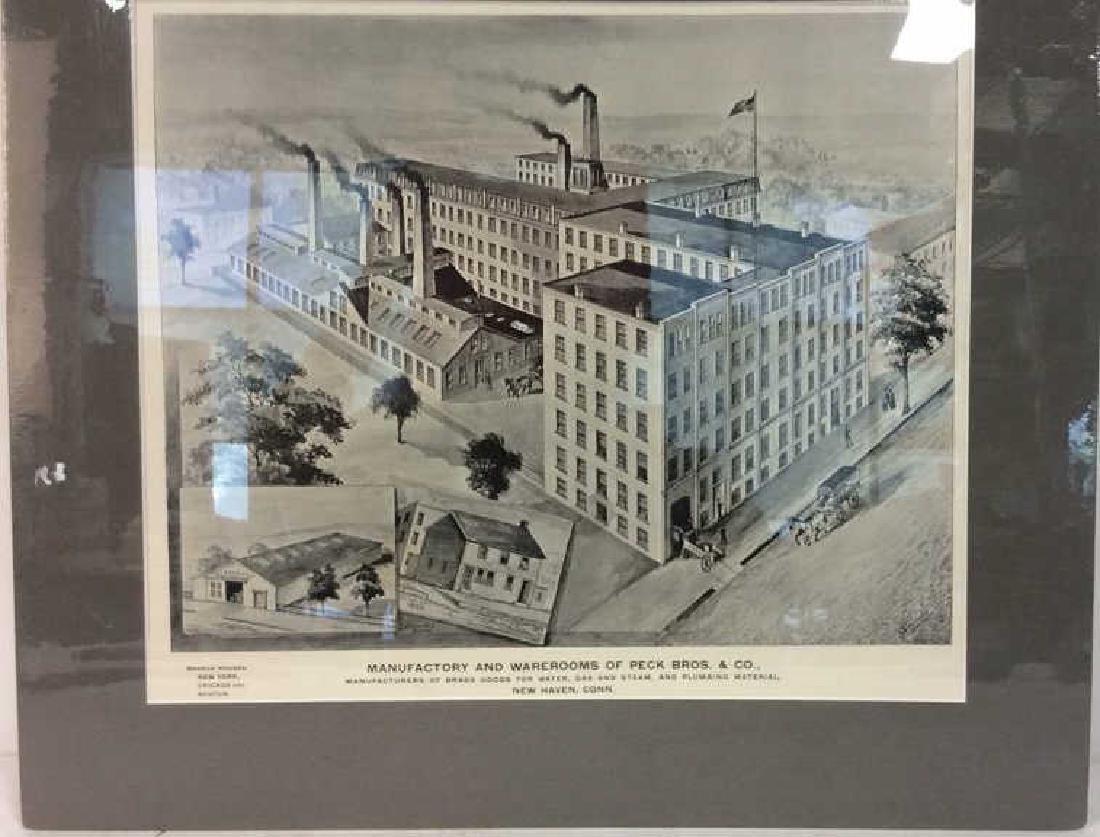 Original Print Peck Bros & Co New Haven, 1893 - 3