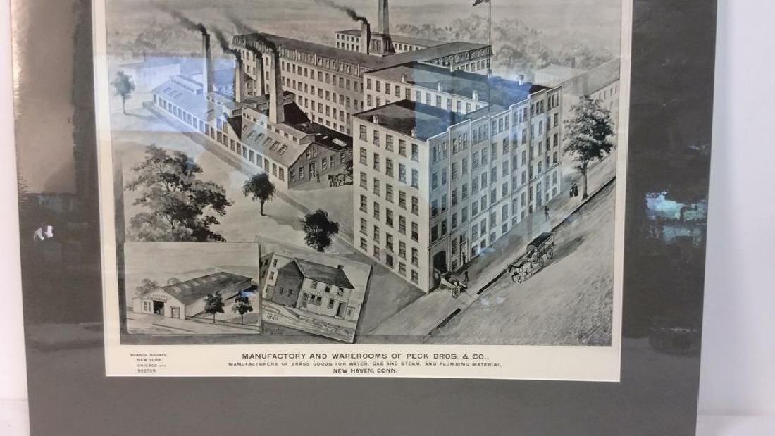 Original Print Peck Bros & Co New Haven, 1893 - 4