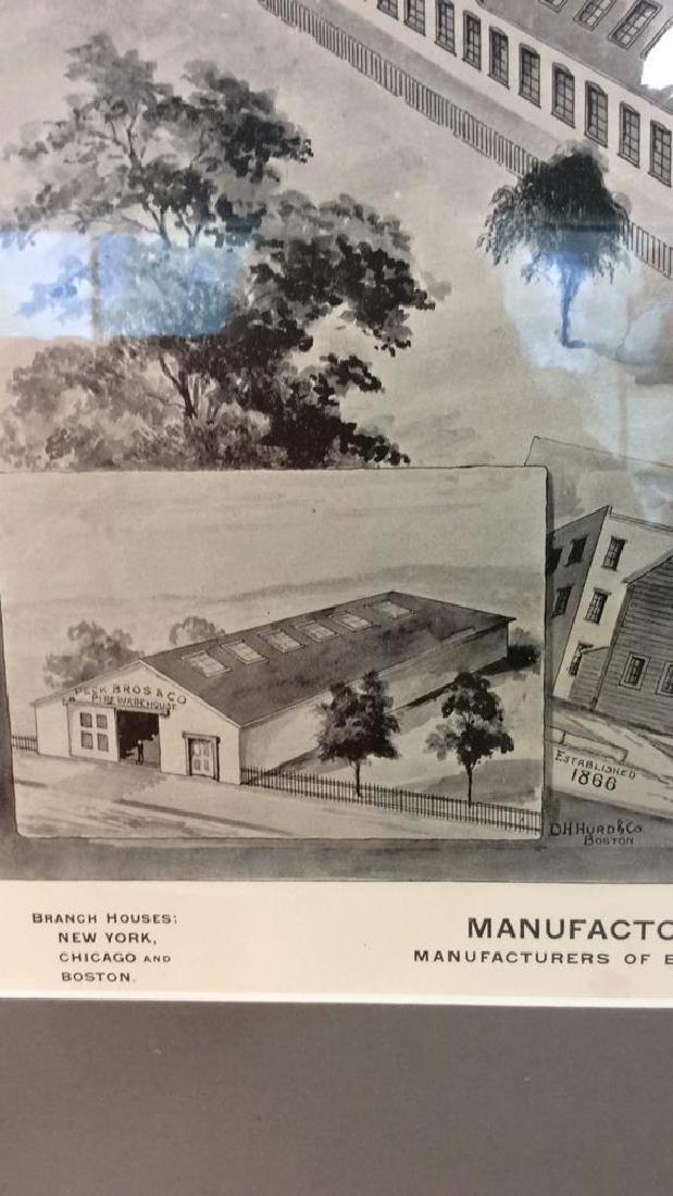 Original Print Peck Bros & Co New Haven, 1893 - 7