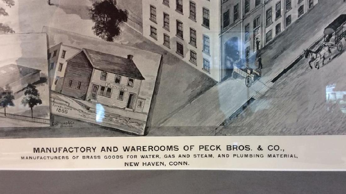 Original Print Peck Bros & Co New Haven, 1893 - 8