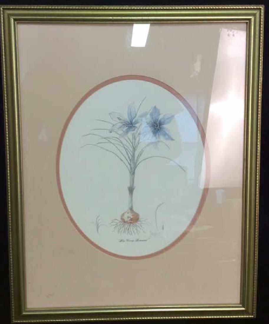 Blue Crocus Botanical Print