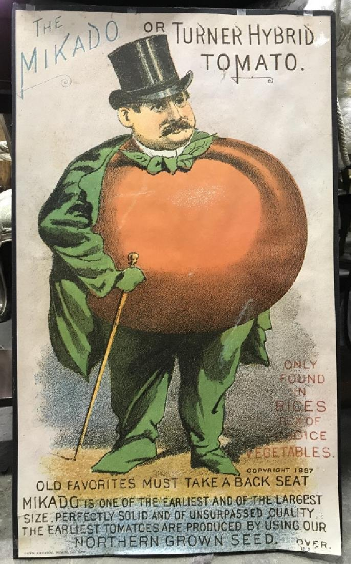 THE MIKADO OR TURNER HYBRID TOMATO Poster