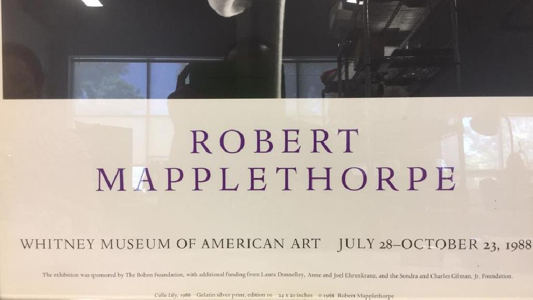 ROBERT MAPLETHRORPE Promotional Poster - 7